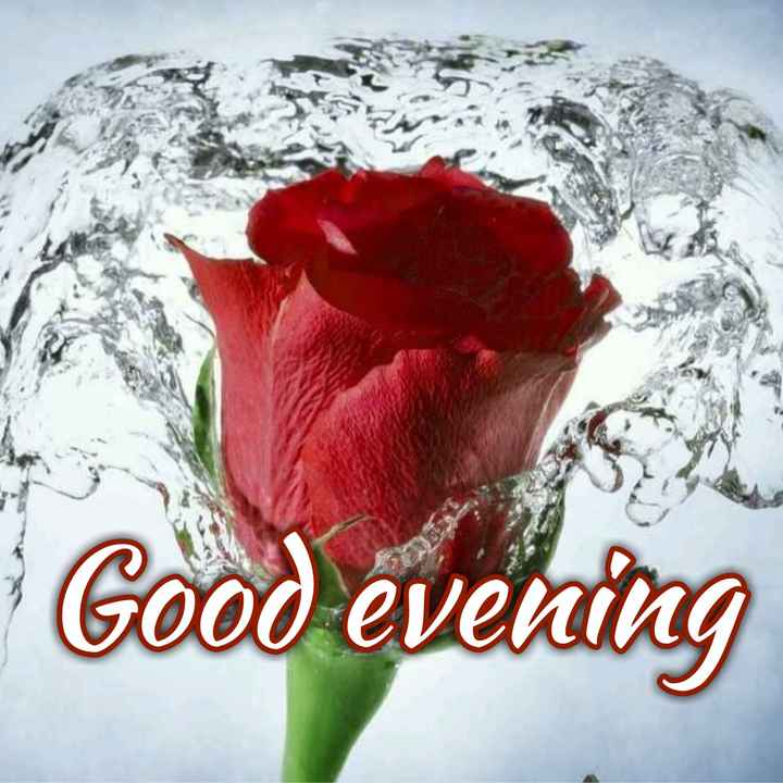 shubh sandhy - Good evening - ShareChat