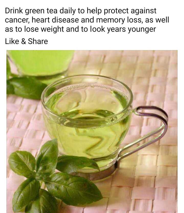 ಮುಖದ ಕಳೆ - Drink green tea daily to help protect against cancer , heart disease and memory loss , as well as to lose weight and to look years younger Like & Share - ShareChat