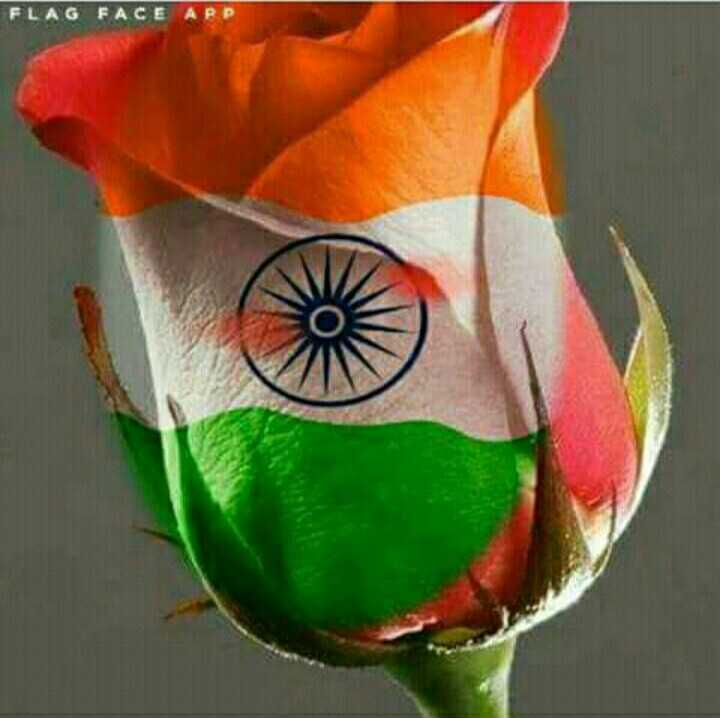 india wale - FLAG FACE APP - ShareChat