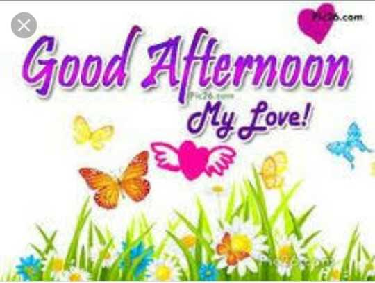 Good Afternoon - OT Good Afternoon Se My Love ! - ShareChat