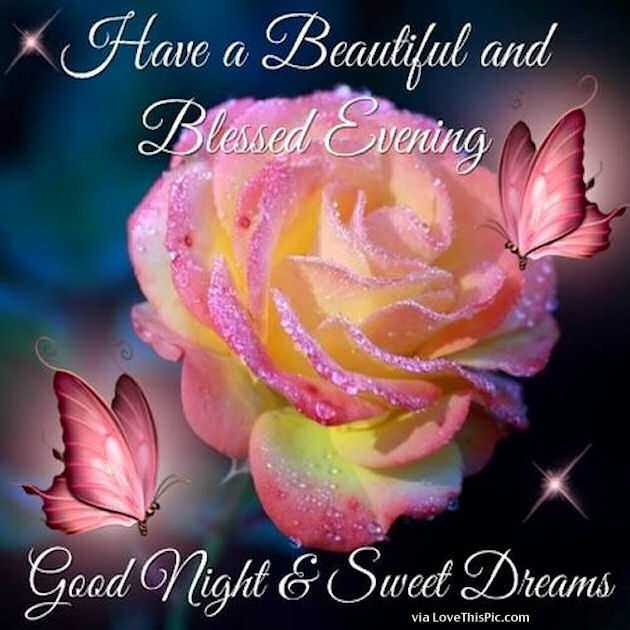 friends - Have a Beautiful and Blessed Evening Good Night & Sweet Dreams via LoveThisPic . com - ShareChat