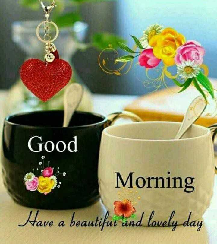 वॉट्सऐप -dp - Good Morning Have a beautifur und lovely day - ShareChat
