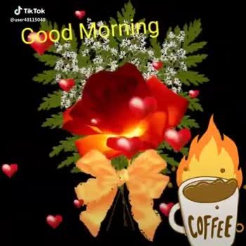 whatsapp status song - @ user40115040 Good Morning Coffet Good Morning Scolaire et 40 1940 - ShareChat