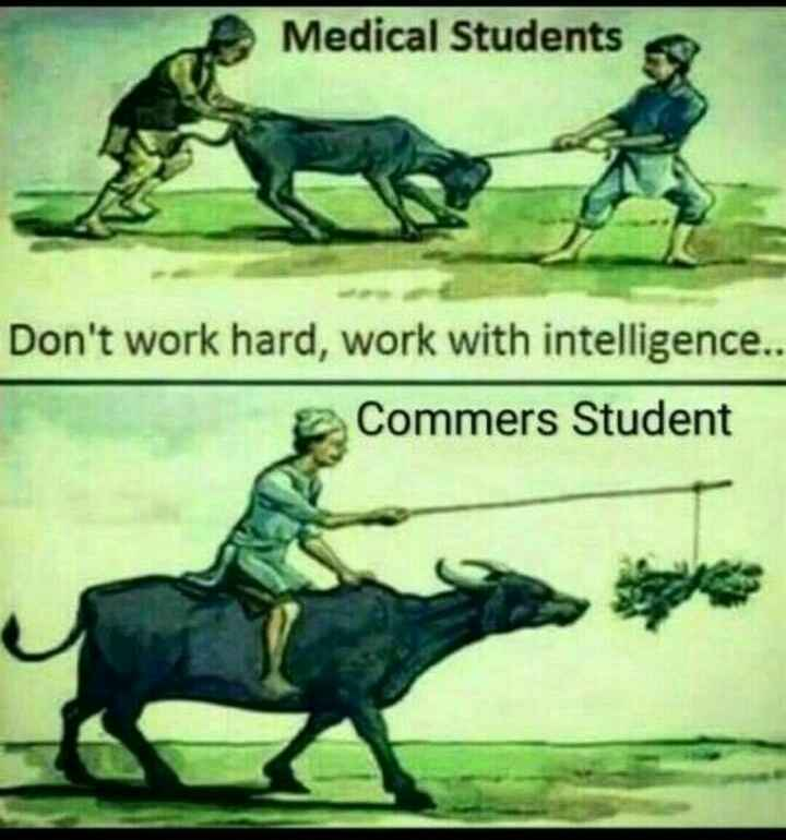 last bench students..... - Medical Students Don ' t work hard , work with intelligence . . Commers Student - ShareChat
