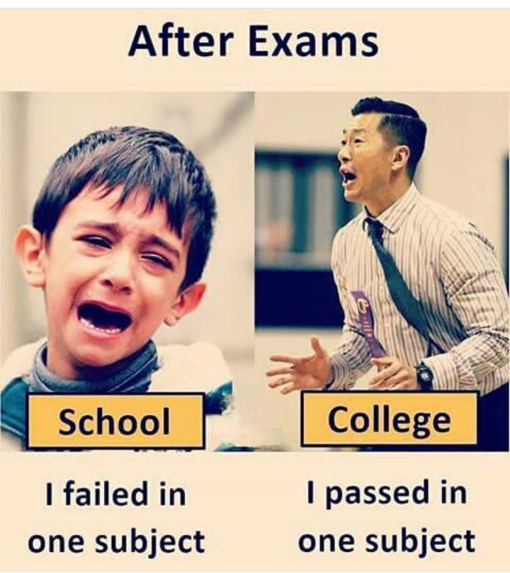exam - After Exams School College I failed in one subject I passed in one subject - ShareChat