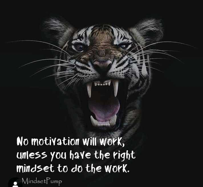 english quotes - No motivation will work , unless you have the right mindset to do the work . • Mindset Pump - ShareChat