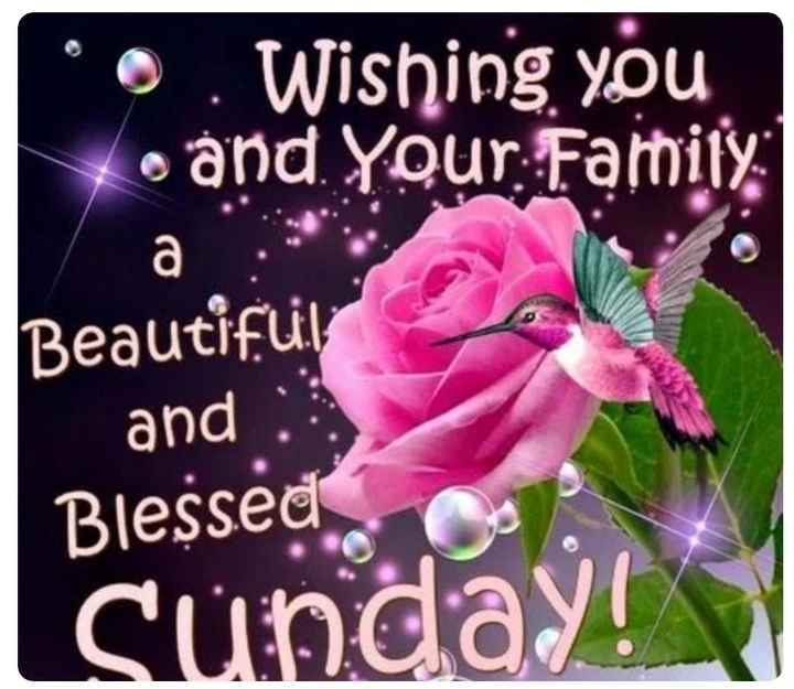 good morning g - * . Wishing you Loánd . Your : Family : Beautiful and : Blessed Sunday - ShareChat