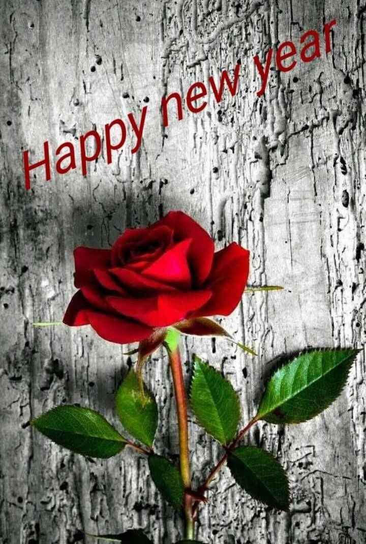 happy new year wishes 2019 - Happy new year - ShareChat