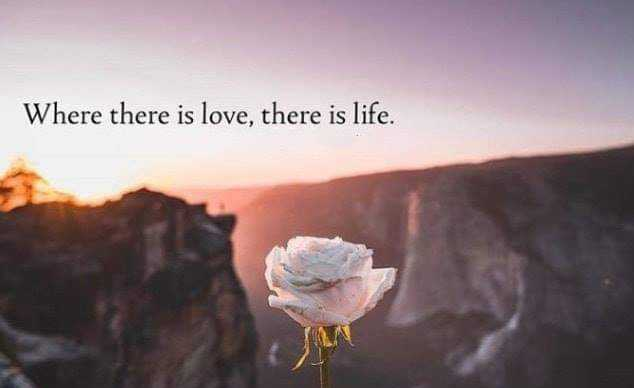 ✅ - Where there is love , there is life . - ShareChat