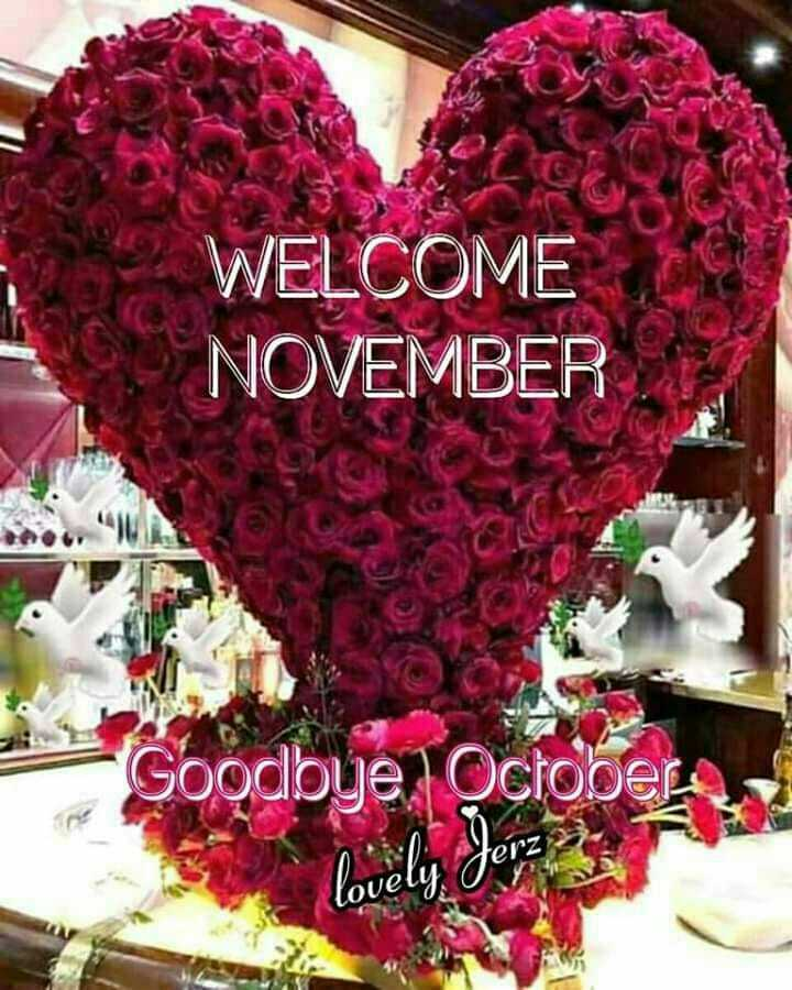 Welcome 'નવેમ્બર' ❤️ - WELCOME NOVEMBER Goodbye , October lovely , Jerz OU - ShareChat