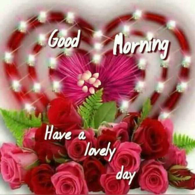 good morning - Good Morning Have lovely day - ShareChat