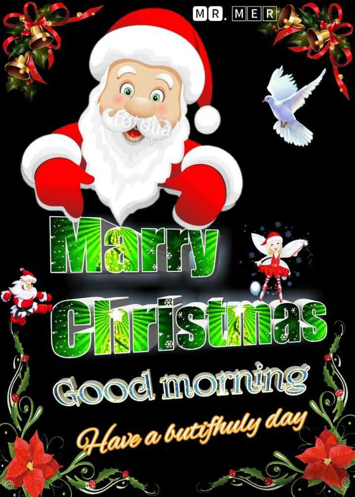 🎄मेरी क्रिसमस - MR . MER Cristras Good morning . Have a butifhuly day - ShareChat