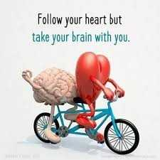 message - Follow your heart but take your brain with you . - ShareChat