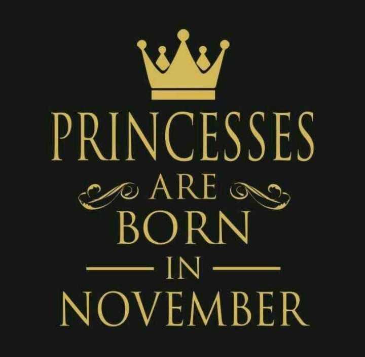అవును కదా🤔 - PRINCESSES ARE BORN - IN NOVEMBER - ShareChat