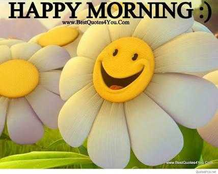 NV फनी फोटोज़ - HAPPY MORNING : ) www . BestQuotes4You . Com ww . Best Quotes4You . com - ShareChat