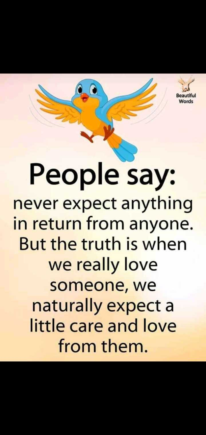 g.m. - Beautiful Words People say : never expect anything in return from anyone . But the truth is when we really love someone , we naturally expect a little care and love from them . - ShareChat
