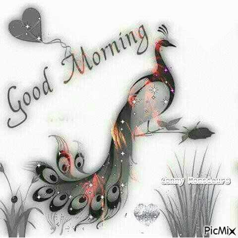 gm - Good Morning » Conny Monsieurs PicMix - ShareChat