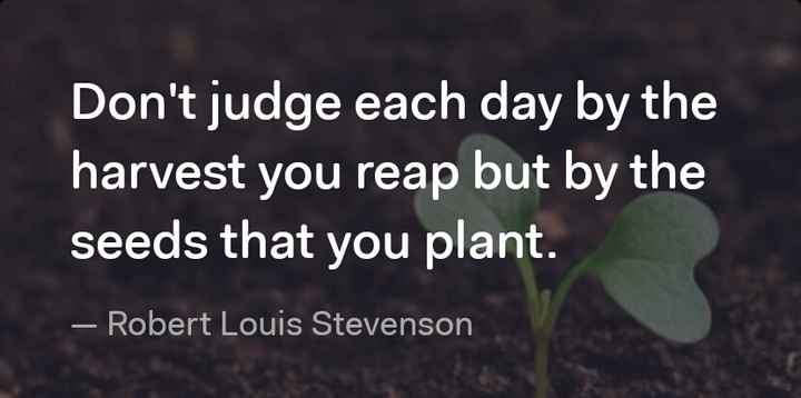 gm 👃 - Don ' t judge each day by the harvest you reap but by the seeds that you plant . – Robert Louis Stevenson - ShareChat