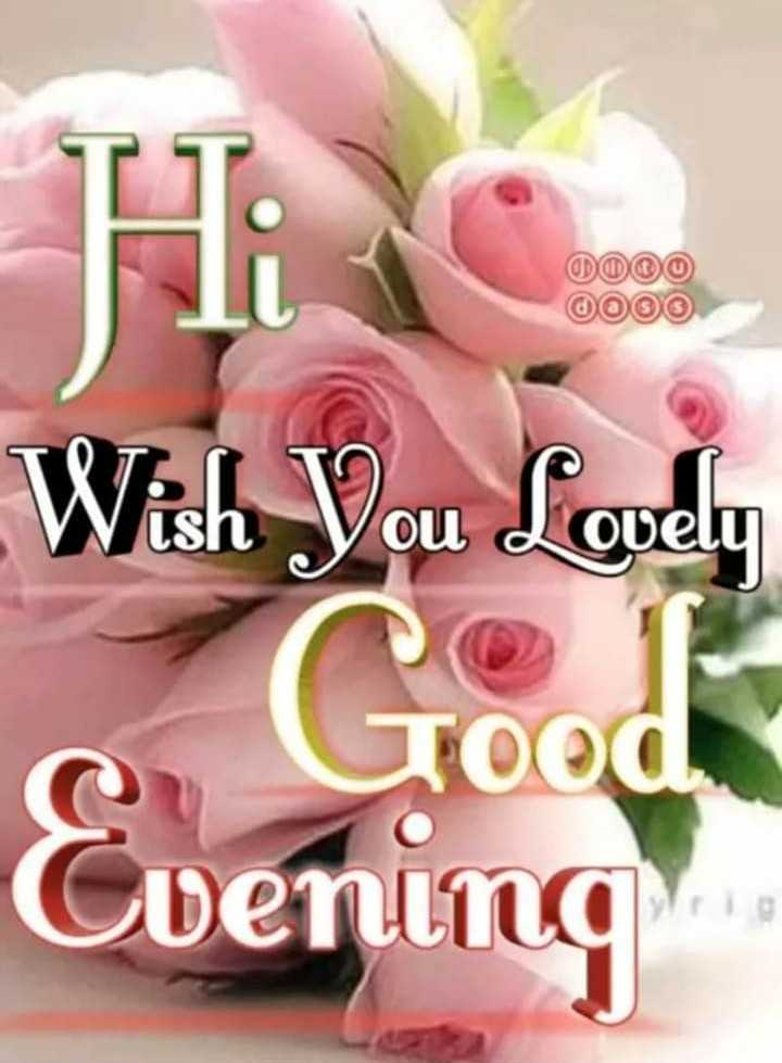 good evening friends - Wish You Lovely Grood Cuening - ShareChat