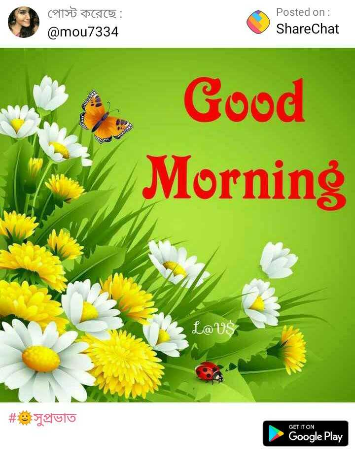 goodmorning - পােস্ট করেছে : @ mou7334 Posted on : ShareChat Good Morning LaVS # aulo GET IT ON Google Play - ShareChat