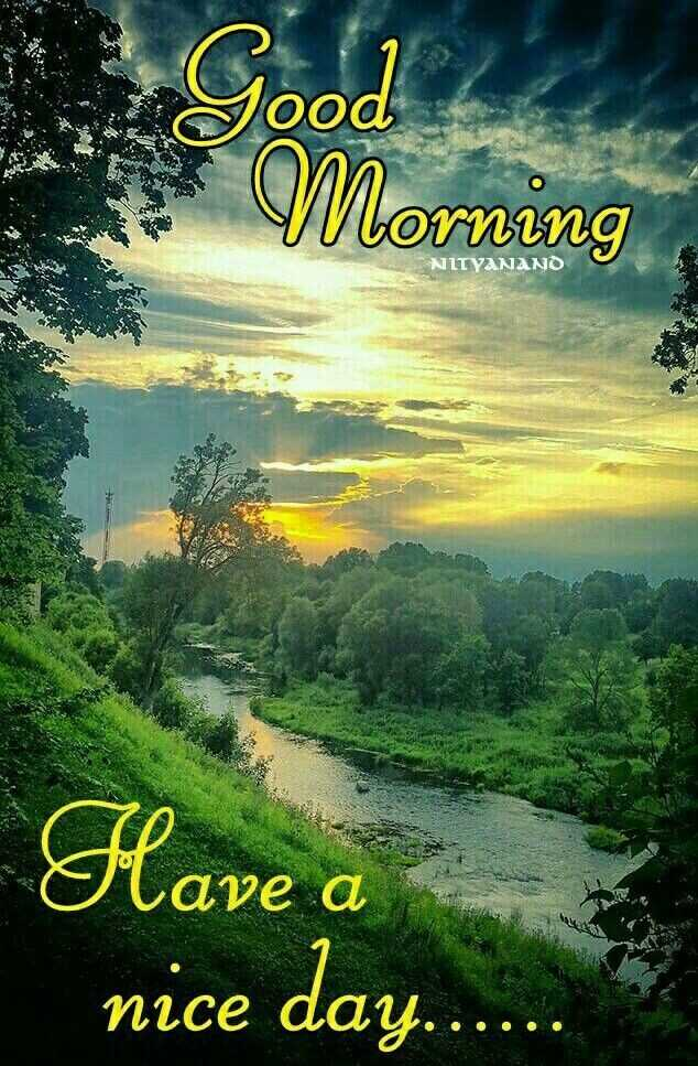good   morning - Good s Morning NITYANAND Have a Lave a nice day . . . - ShareChat