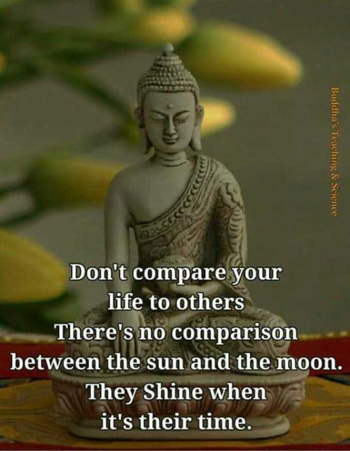 good thoughts - Buddha ' s Teaching & Science Don ' t compare your life to others There ' s no comparison between the sun and the moon . They Shine when it ' s their time . - ShareChat