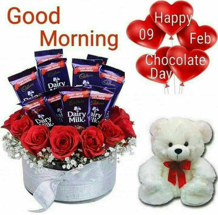 happy chocolate day 🍫🍫 - Good Morning Happy 09 4 Feb Chocolate Day TES Carry Dairy . Sale ! GA Dairy diry Milk Ik - ShareChat