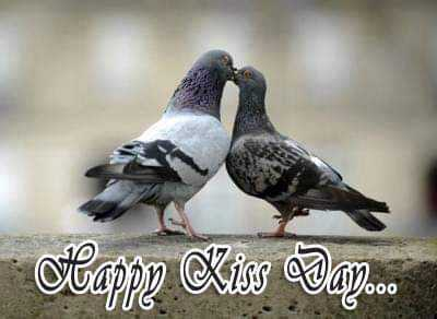 😘 happy kiss day - Happy Kiss Day . TIC - ShareChat