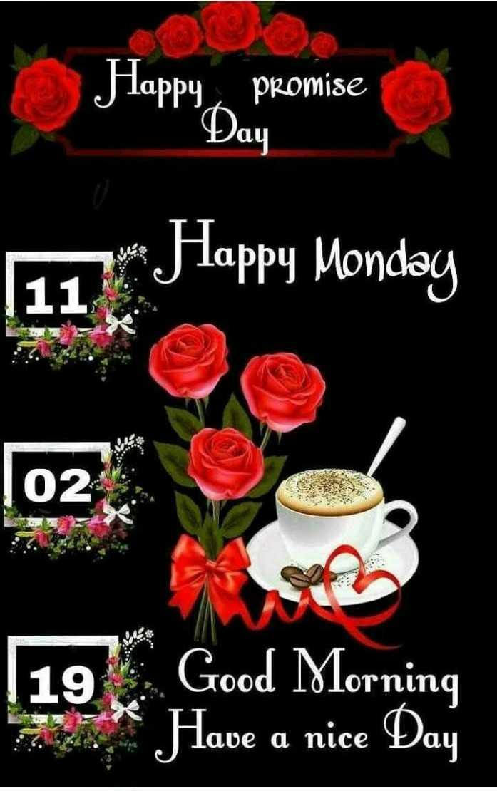 happy promise day💐💐 - labby Promise 10 Happy Monday 024 ( 19 Good Morning Have a nice Day - ShareChat