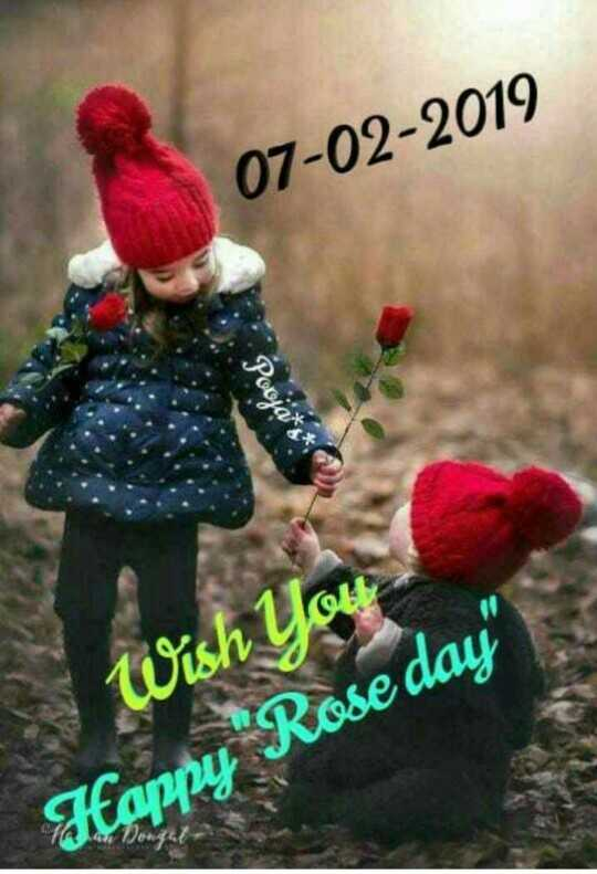 happy rose day - 07 - 02 - 2019 Wish You Happy Rose day - ShareChat