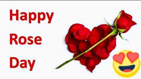 🌷🌷happy rose day 🌷🌷 - Happy Rose Day - ShareChat