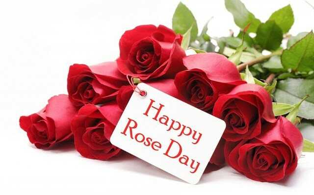 happy rose day 😘😘 - * Happy Rose Day - ShareChat