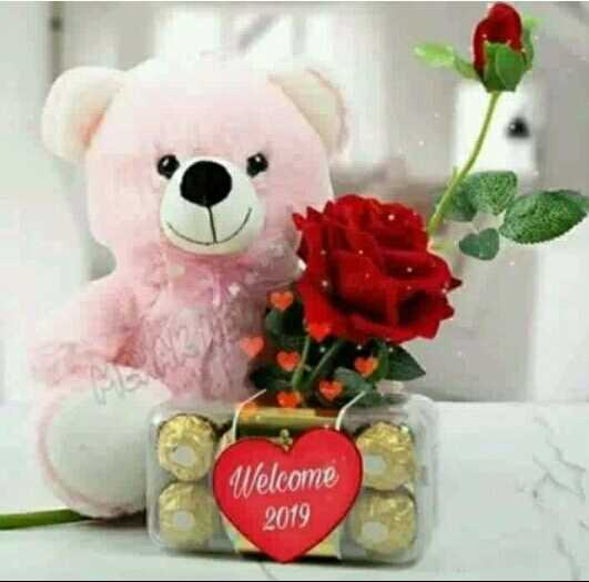 i love teddy - Welcome 2019 - ShareChat