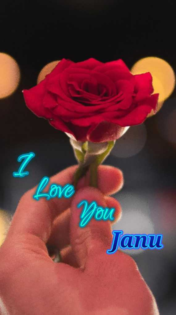 i love you - Love You Janu - ShareChat