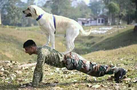 jai hind indian army - ShareChat