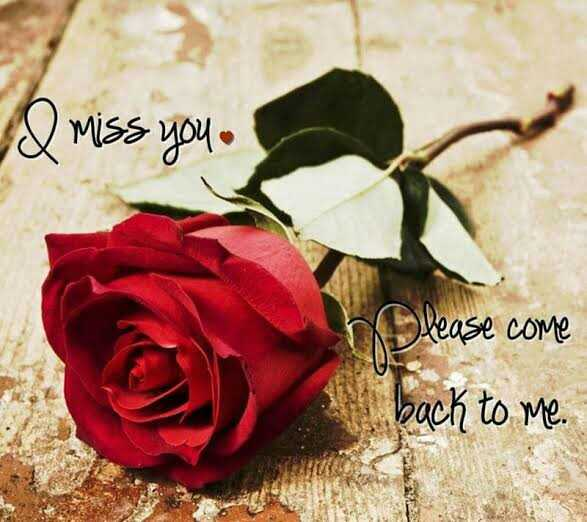 missing day - & miss you . lease come back to me . - ShareChat