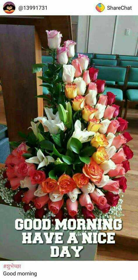 morning..! - @ 13991731 ShareChat GOOD MORNING HAVE A NICE DAY # शुभेच्छा Good morning - ShareChat