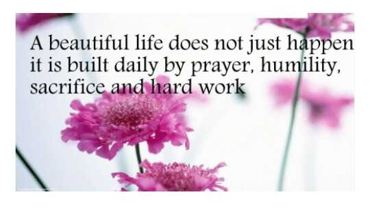 naa quotation - A beautiful life does not just happen it is built daily by prayer , humility , sacrifice and hard work - ShareChat