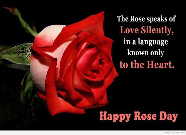 rose 🌹 day - The Rose speaks of Love Silently , in a language known only to the Heart . DESI COMMENT . COM Happy Rose Day Das comments . com - ShareChat