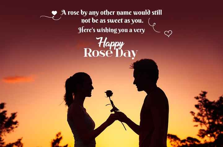 rose 🌹 day - A rose by any other name would still not be as sweet as you . Here ' s wishing you a very Happy Rose Day - ShareChat