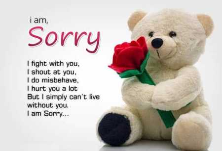 sorry sorry - i am , Sorry I fight with you . I shout at you , I do misbehave , I hurt you a lot But I simply can ' t live without you . I am Sorry . . . - ShareChat