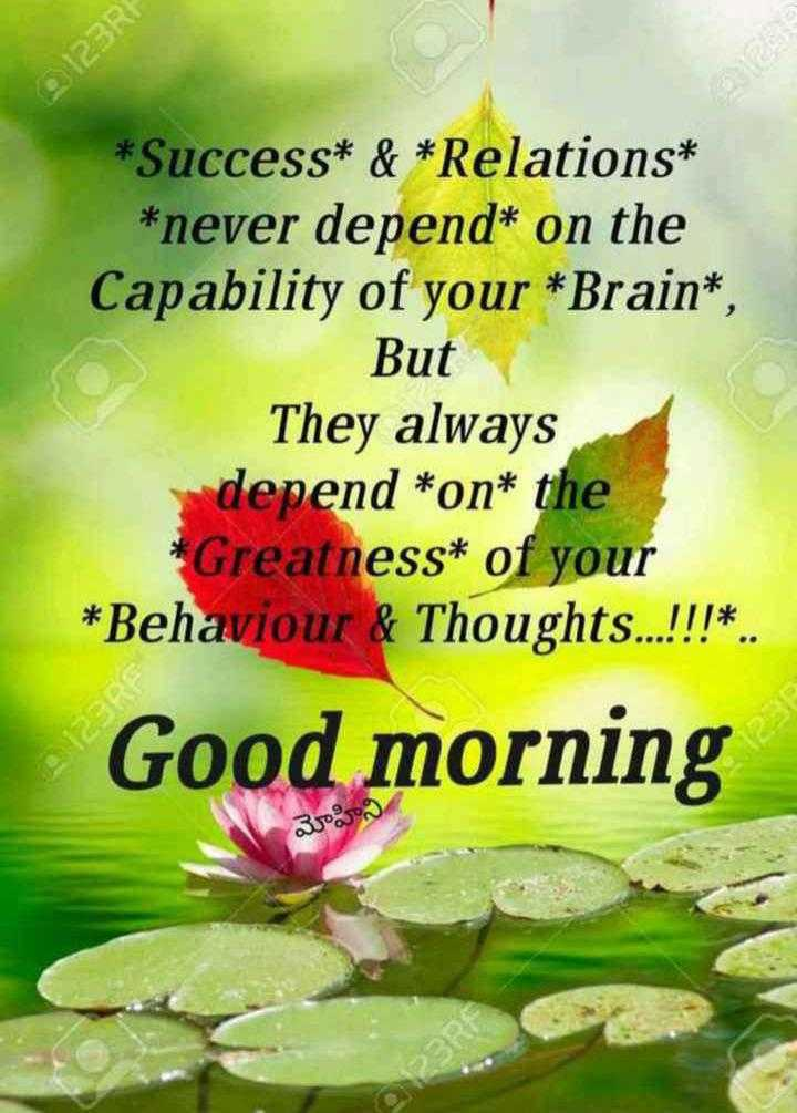 subhothayam - 123RF * Success * & * Relations * * never depend * on the Capability of your * Brain * But They always depend * on * the * Greatness * of your * Behaviour & Thoughts . . . ! ! ! * . . 123R Good morning మోహిని - ShareChat