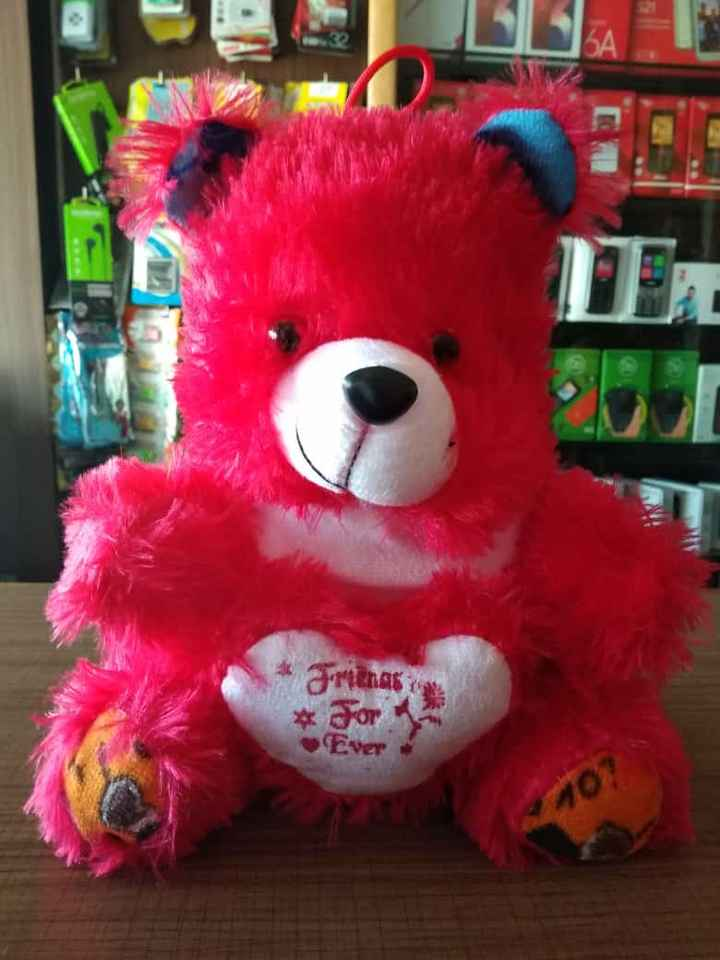 teddy love - Or Ever - ShareChat